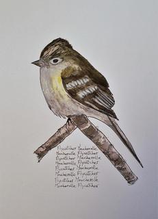small bird art