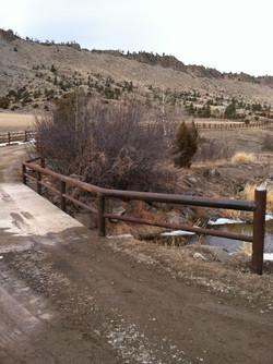Custom Bridge rails