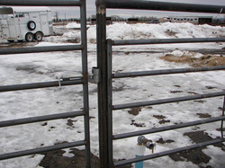 fencing -springbolt latch.jpg