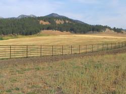 Perimeter and cross fencing