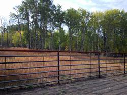 Fence with post and top rail