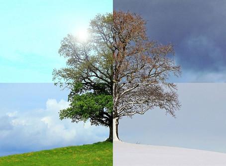 Les couleurs en 4 saisons