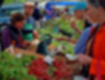 Consumers looking at vegetables at a farm market