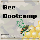 Bee Bootcamp (5).png