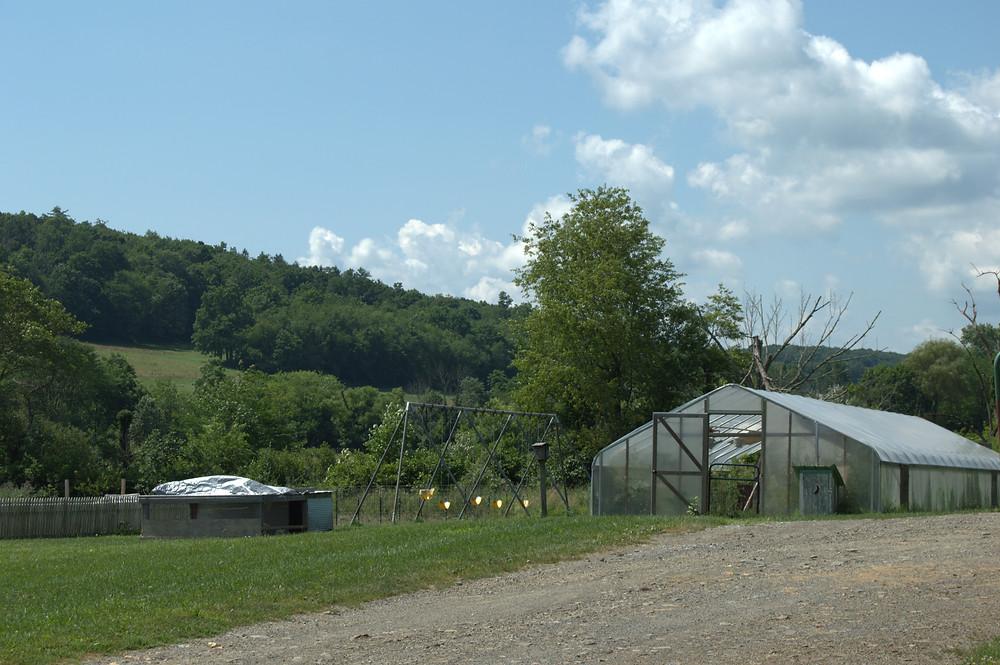 Black Valley Farm