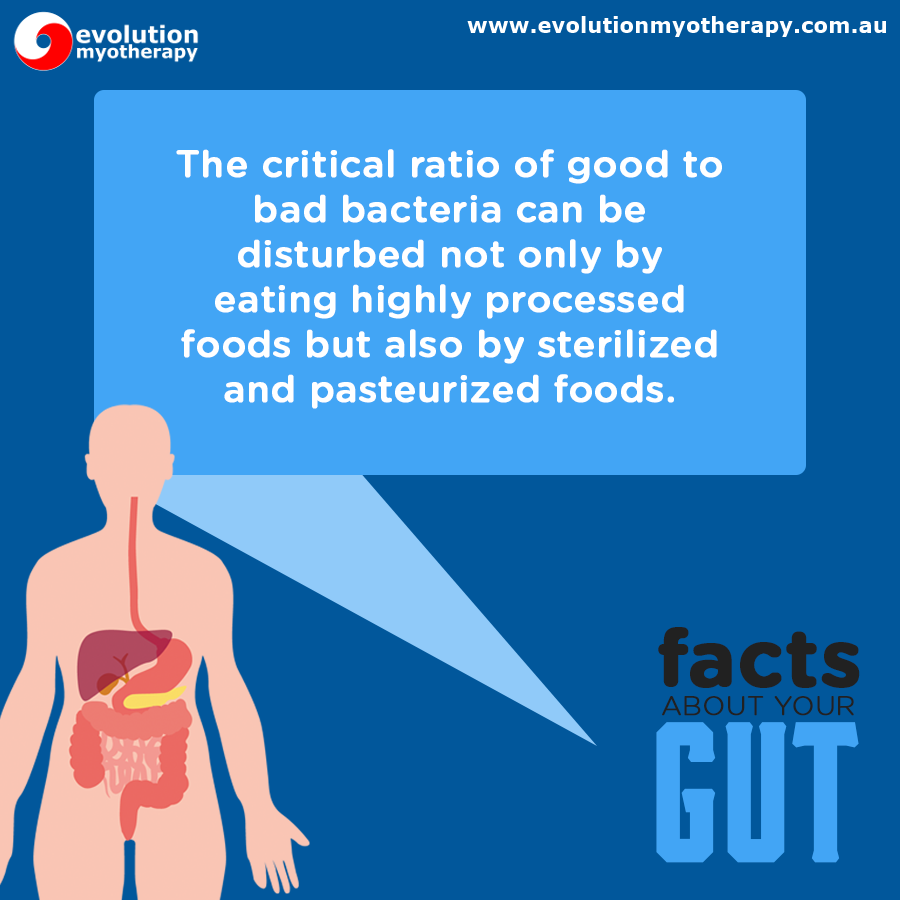 Gut Health Facts #4