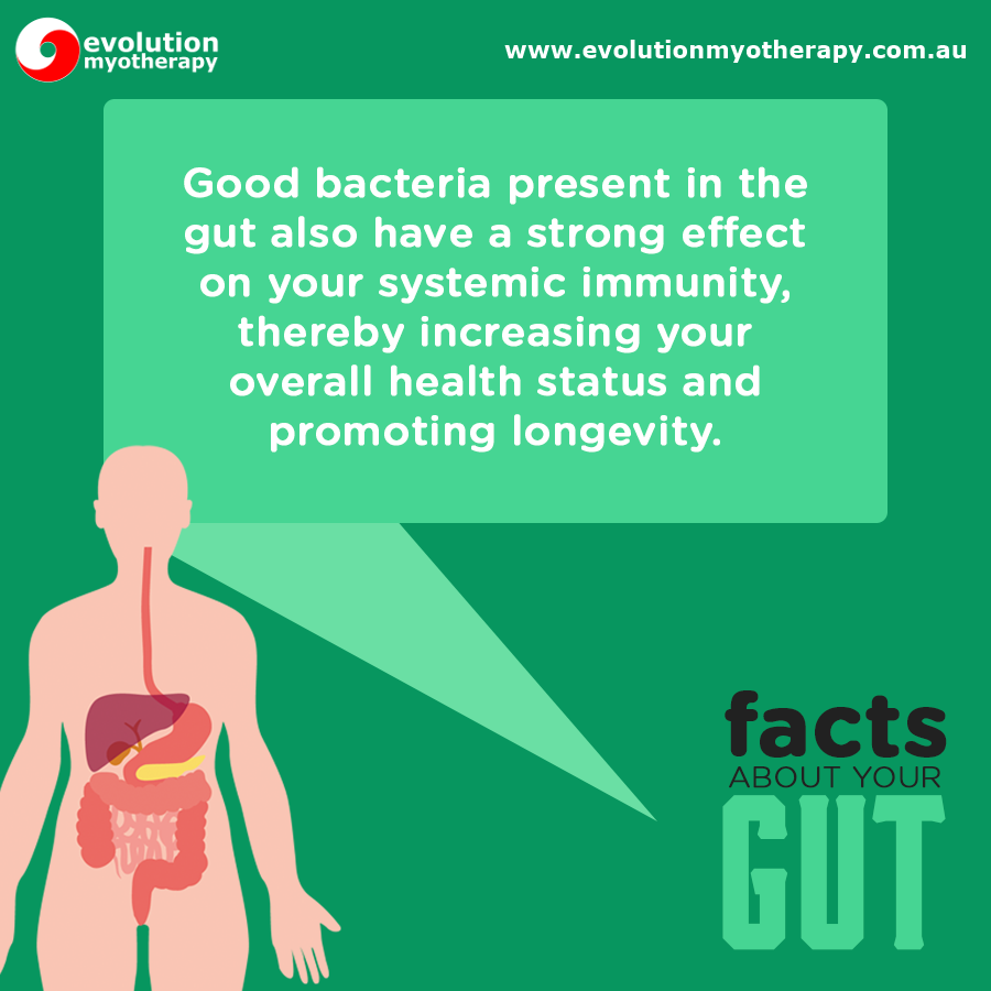 Gut Health Facts #8