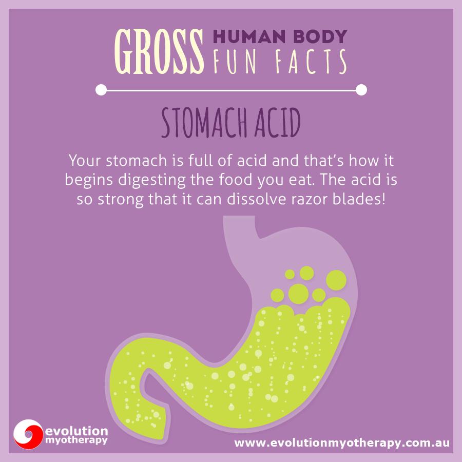 Gross Human Body Facts #19: Stomach Acid