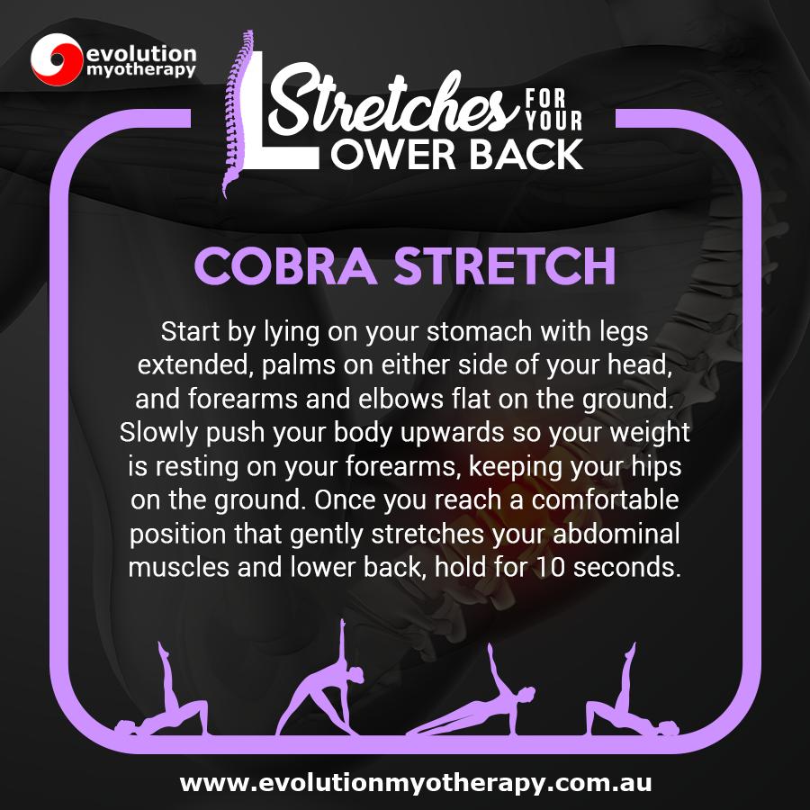 Cobra Stretch
