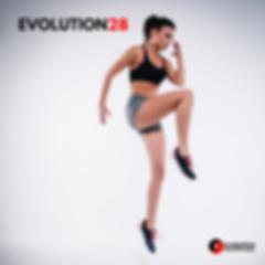 EVOLUTION28.png