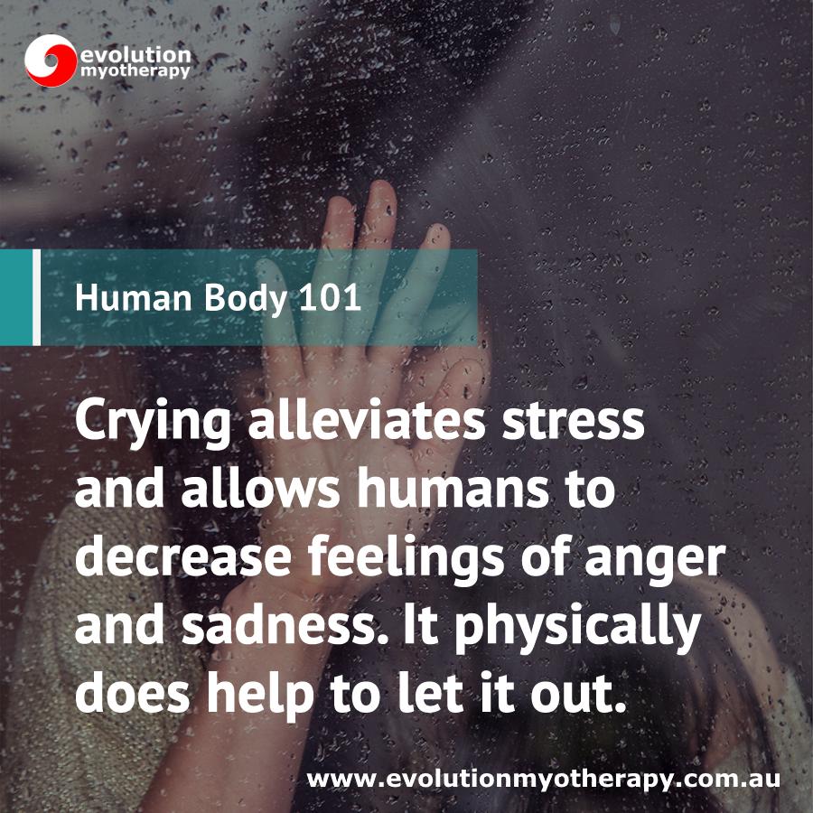 Human Body 101: Tears