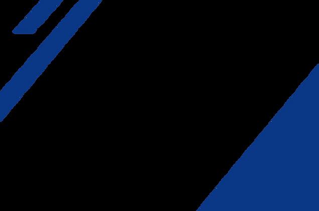 rayas azules en blanco