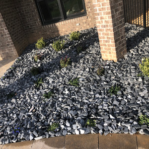 Rock Pool Scaping