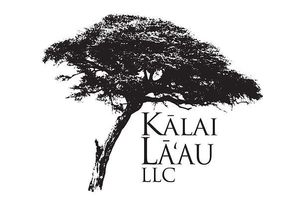 Kauwela Custom Order - ʻukulele balance due