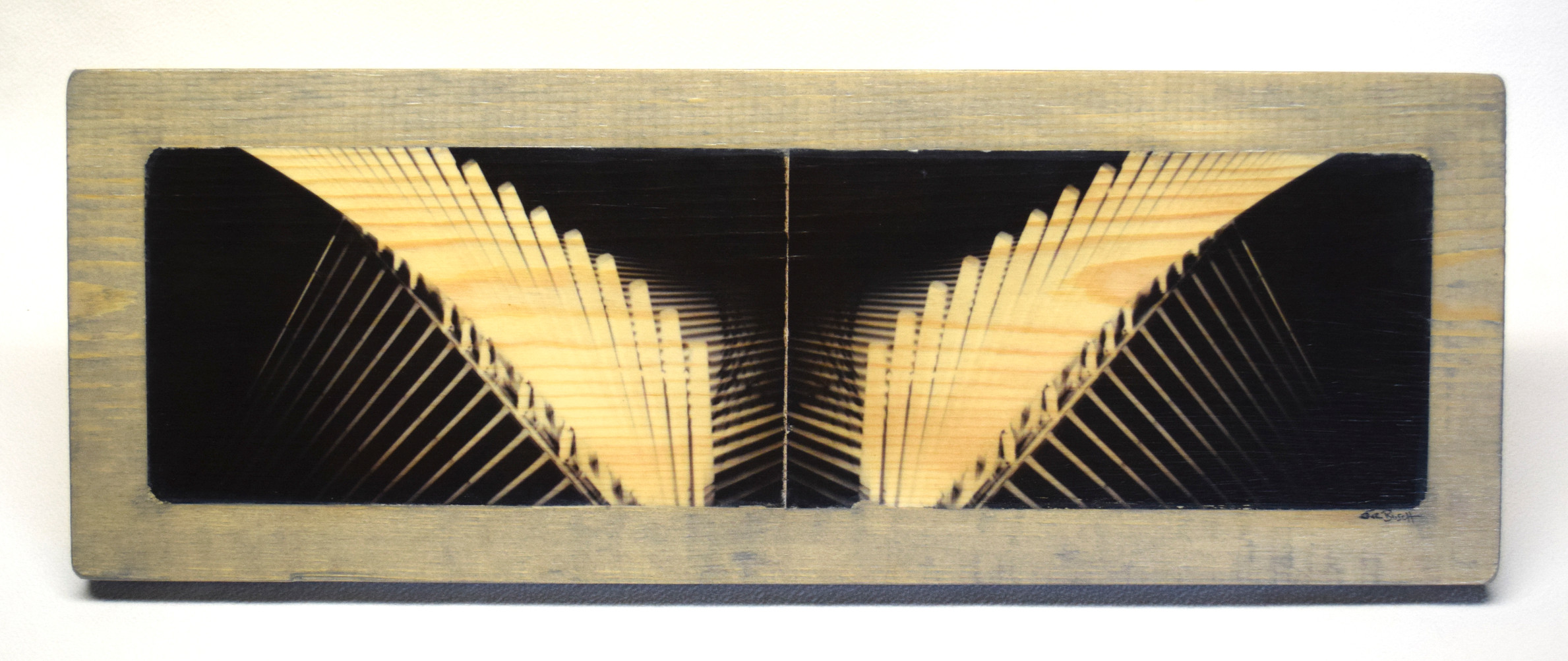 Calatrava Wings Panoramic
