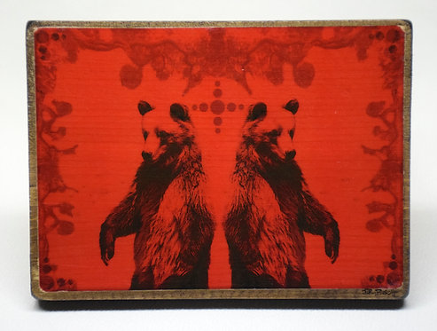 Symmetry In Nature #4 (Red Bears)