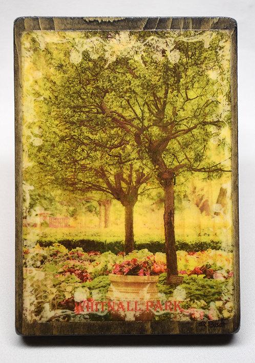 Whitnall Park (Vintage Postcard Series)