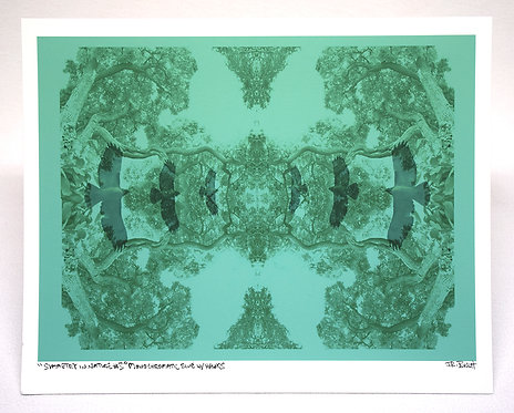 Symmetry In Nature #3 (Monochromatic Blue w/Hawks)