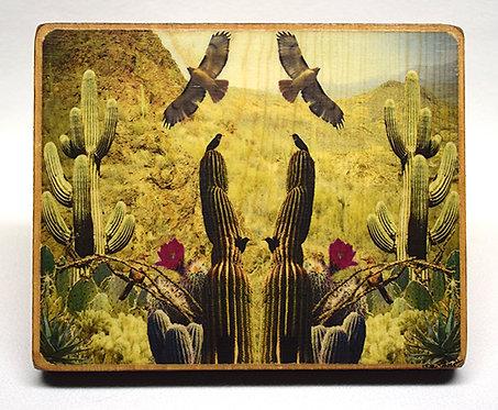 Arizona Collage