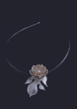 No.002 蓮