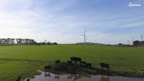 Acciona - Mt Gellibrand Wind Farm