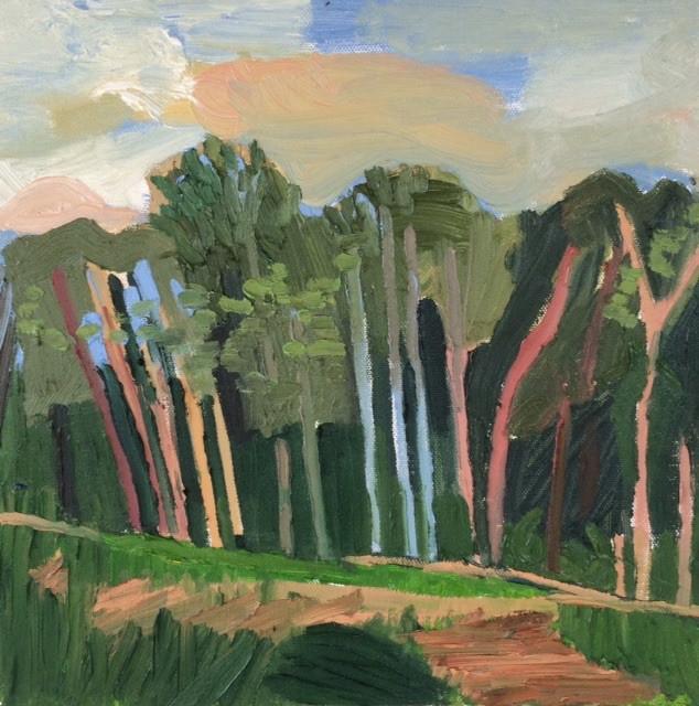 Landscape, PA4