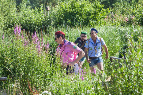 Les scouts dans la belle nature.jpg