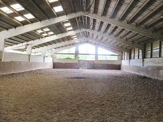elevage de chevaux, equitation, haras, à vendre, demeure equestre