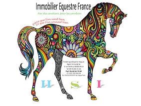 cheval equitation, haras, elevagen centre equestre