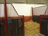 hsi nord ouest a vendre centre equestre