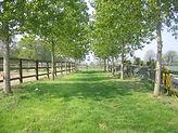 haras, centre equestre, ecurie, normandie, calvados