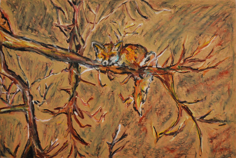 Sleeping Tree Fox
