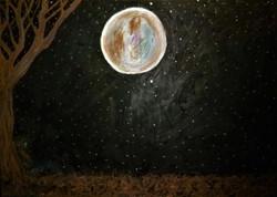 Moonlit Solitude