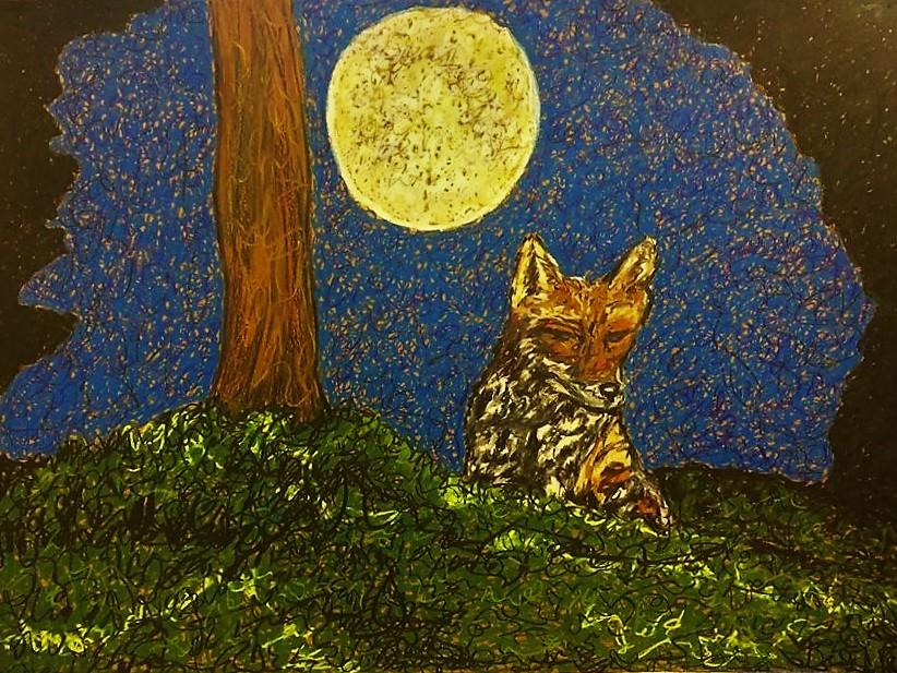 Night Fox and Moon