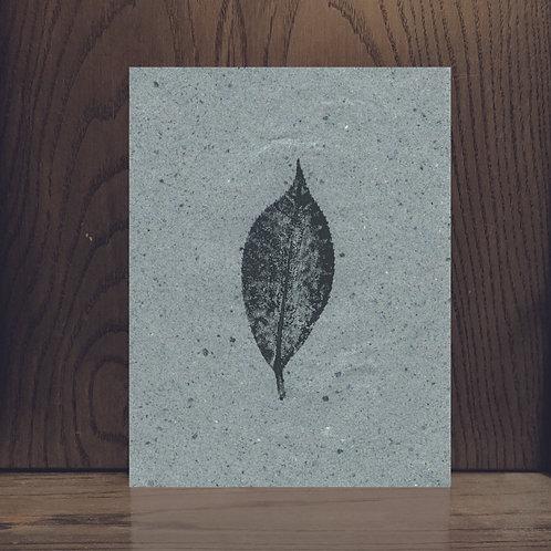 Impression végétale - Camélia