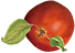 icon_apple01.png
