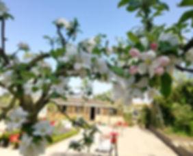 omslagfoto giardino.jpg