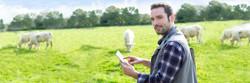 Carbon farmer in field.jpg