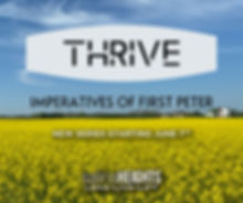 Final Thrive.jpg