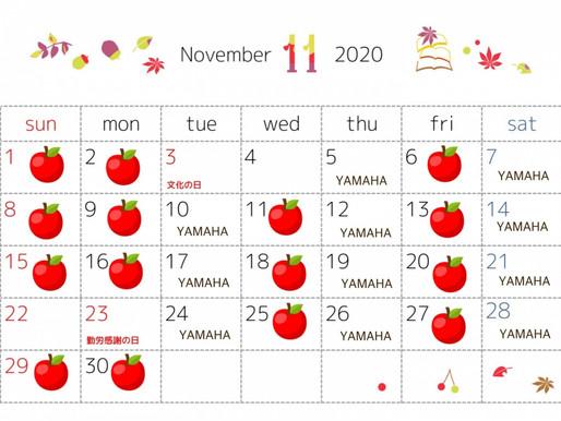 11月12月レッスン日のお知らせ