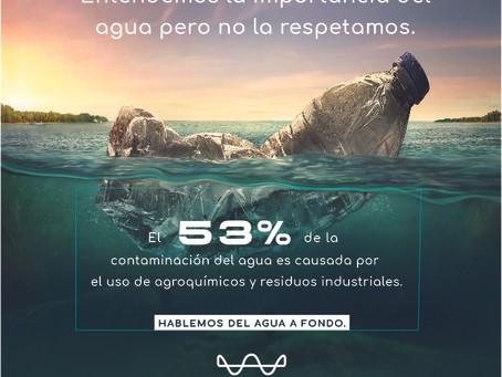 Entendemos la importancia del agua pero no la respetamos