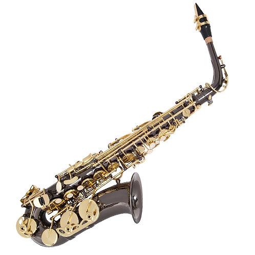 Odyssey Premiere 'Eb' Alto Saxophone Outfit ~ Black/Gold