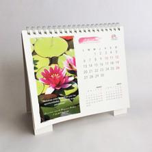Diseno Calendario E mac