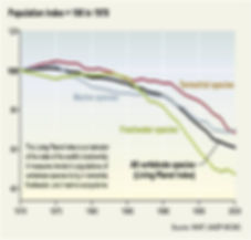 biodiversitet graf 2.jpg