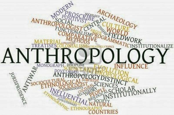 antropologi, veganisme, københavns universitet, studie, vegansk, veganer, KU, antropolog, uddannelse
