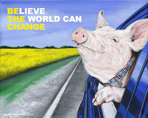 veganisme, vegansk, miljø, klima, bæredygtighed, plantemad, ideologi, vegansk filosofi,