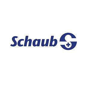 Schaub_Wuerfel.jpg