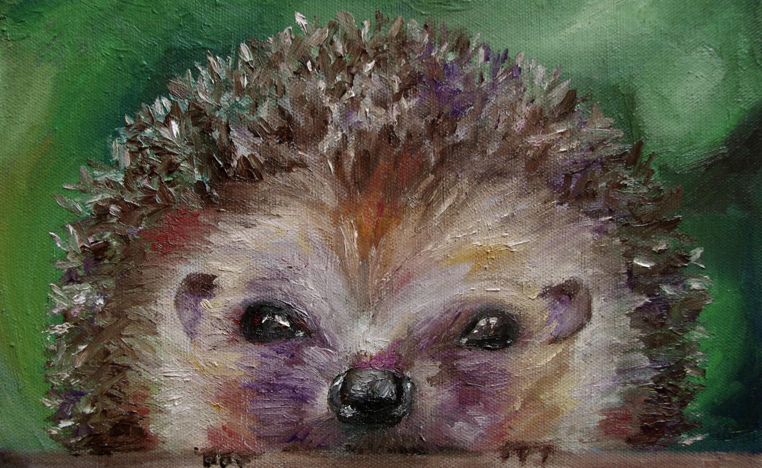 Eyes Of A Hedgehog