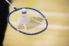 Racket & Shuttlecock