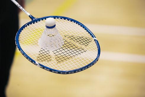 Shuttlecock & Racket